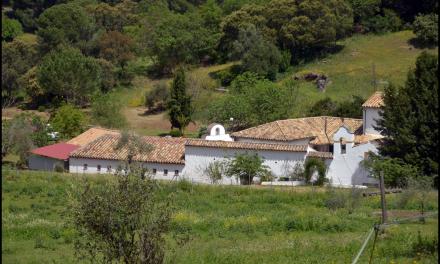 DOMINGO DE LA MISERICORDIA: ANIVERSARIO DE LA BEATIFICACIÓN DEL PADRE CRISTÓBAL